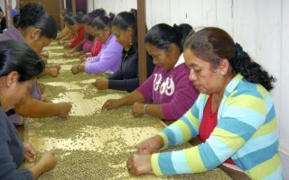 The art and labor of making coffee