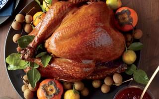 Variations of the Thanksgiving Turkey