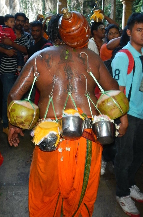 pilgrims insert hooks into their backs during the Thaipusam Festival in Malaysia