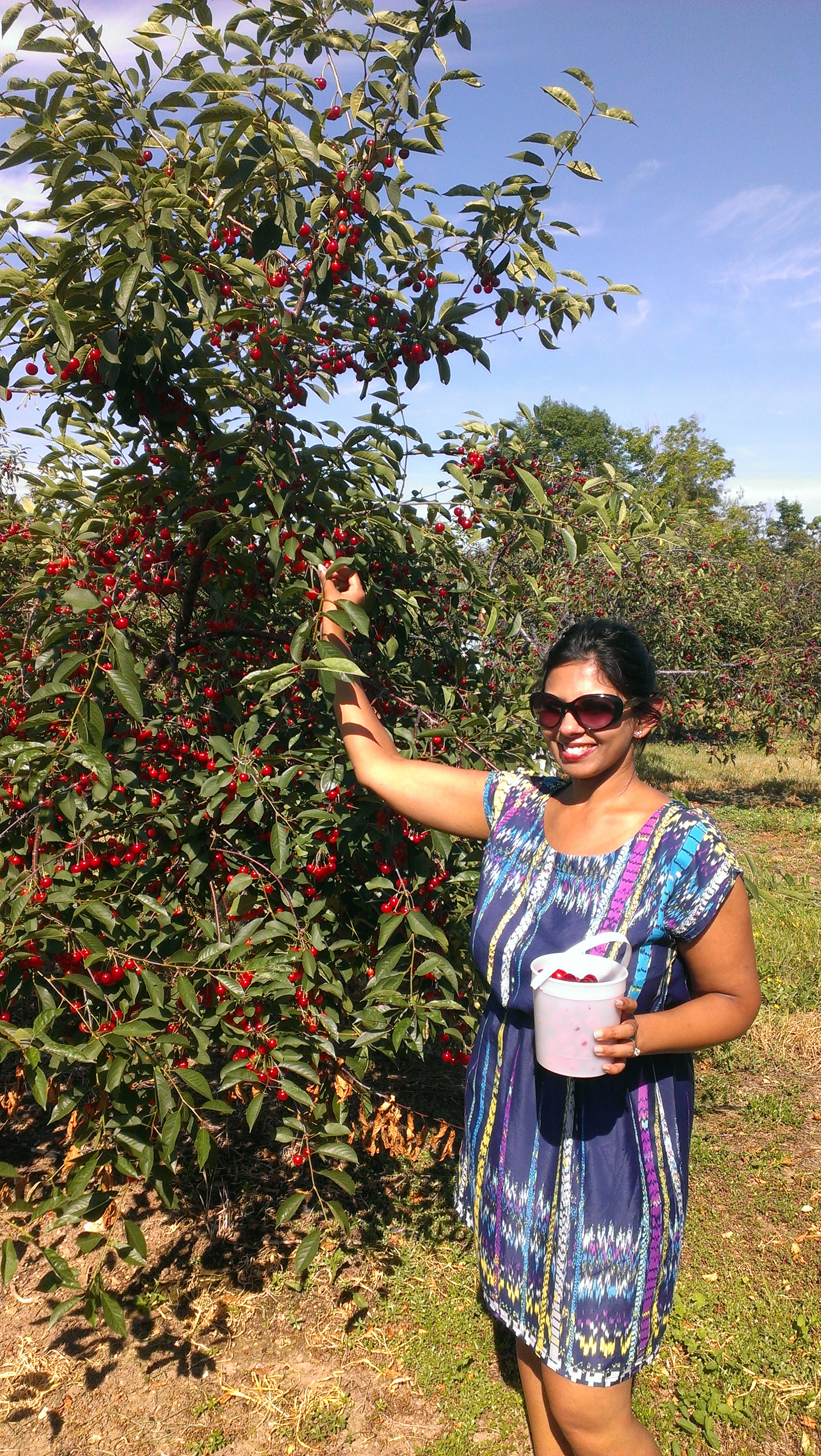 Door County, WI: 5 Ways to Have A Cherry Good Time