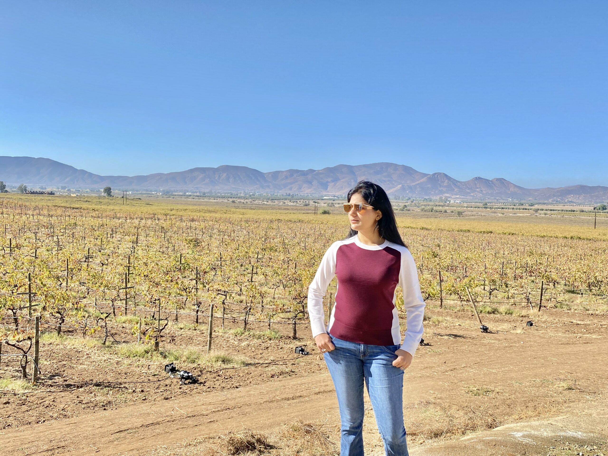 Baja is California's Most Affordable Wine Country
